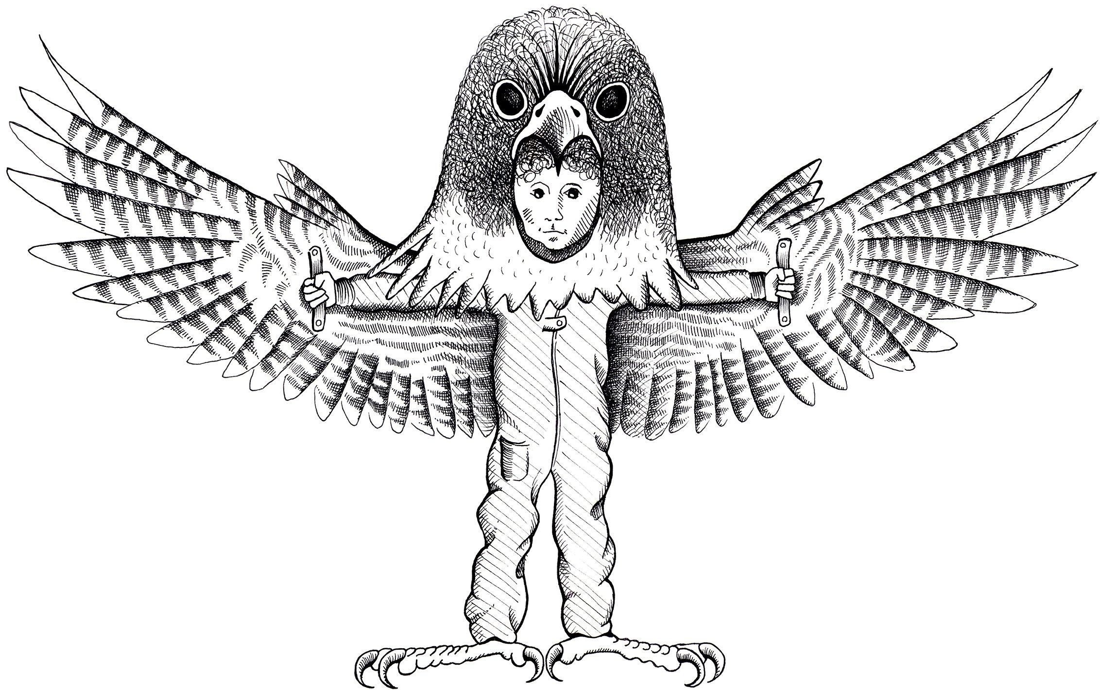 Falcon Boy